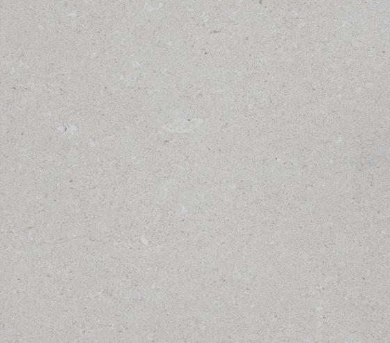 Pietra di Vicenza. Dal cuore dei Colli Berici